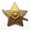 Odznak ČSLA hvězda zlatá
