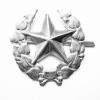 Odznak ČSLA vševojskový stříbrný
