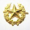 Odznak ČSLA vševojskový zlatý