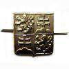 Odznak ČSFR - mořený
