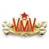 Odznak ČSLA - VMV - zlatavý