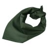 Šátek Orig. AČR zelený